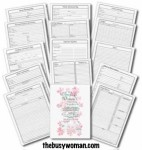 Busy Womans Day Planner Full Set thebusywoman.com
