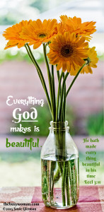 Gerbera Daisy - Everything God makes is beautiful by Susie Glennan thebusywoman.com