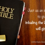 Just as an inhaler is used to give you breath, inhaling the Word of God will give you LIFE. ~Susie Glennan thebusywoman.com