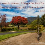 On the Road To Patience by Susie Glennan The Busy Woman thebusywoman.com