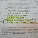 Show me your ways, O Lord, Psalms 25:4-5 thebusywoman.com