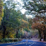 Sometimes it can be beautiful - On the road to patience by Susie Glennan The Busy Woman thebusywoman.com