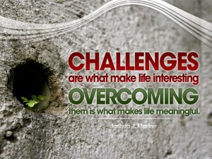 Challenges - Overcoming www.thebusywoman.com