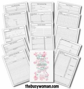 Single Day Planner Pages - The Busy Woman's Daily Planner thebusywoman.com