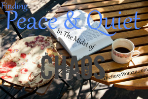 Peace and Quiet In The Midst Of Chaos on thebusywoman.com