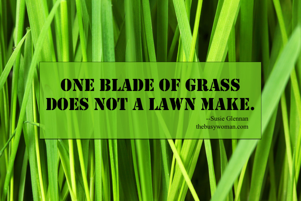 One blade of grass does not a lawn make by Susie Glennan thebusywoman.com