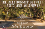 Relationship between habits and willpower on thebusywoman.com