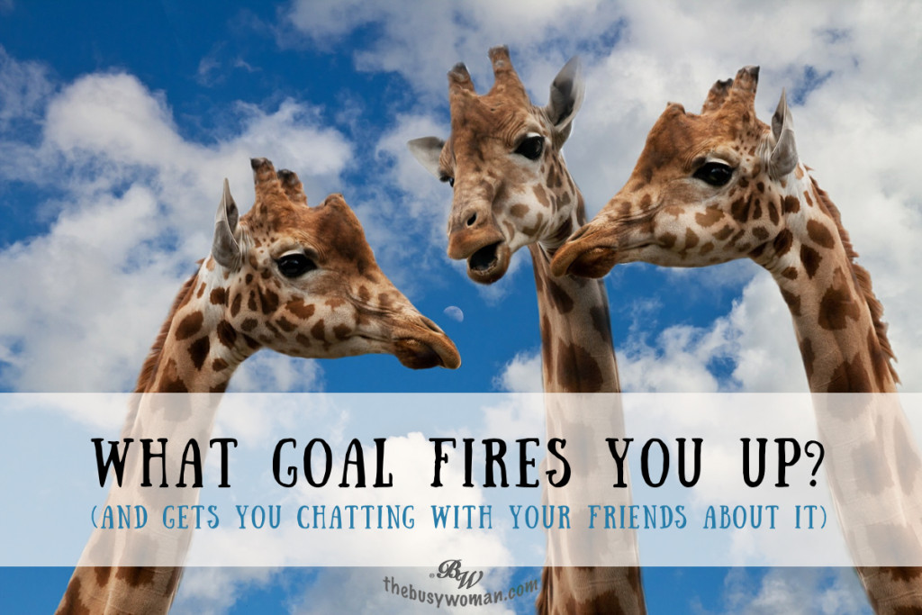 What Goal Fires You Up - Find a Goal on thebusywoman.com