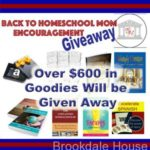 New Homeschool Year Encouragement Giveaway for Moms