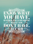Enjoy what you have Ecclesiastes 6:9 on thebusywoman.com