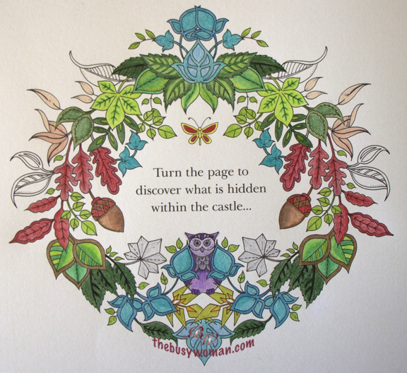 Turn the Page Enchanted Forest by Johanna Basford on thebusywoman.com